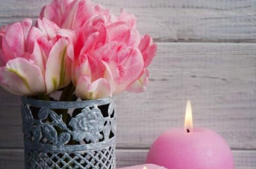 Pink lit candles and pink tulips