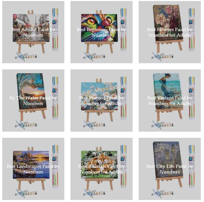 Categories of painting by numbers for adults kits available from Winnie's Picks.