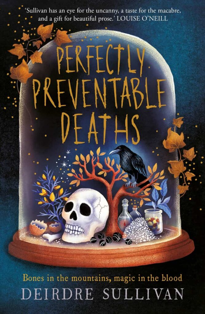 Book cover Perfectly Preventable Deaths by Deidre Sullivan.