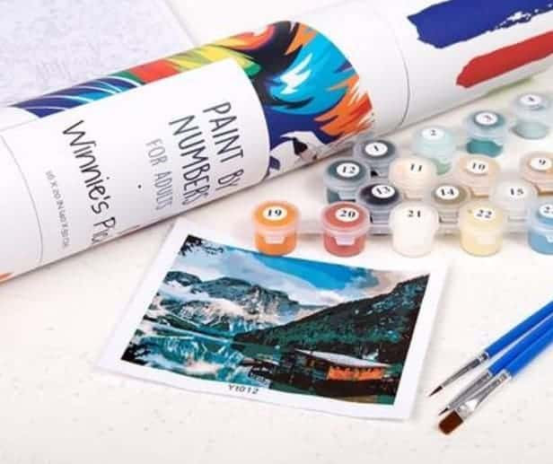 Photo of painting by numbers for adults kit by Winnie's Picks.