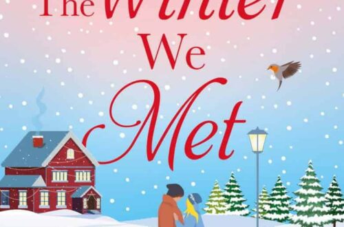 Book review The Winter We Met by Samantha Tonge