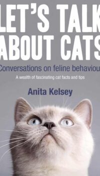 Book cover for Let's Talk About Cats by Anita Kelsey