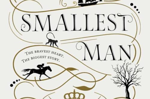 Book cover for The Smallest Man by Frances Quinn