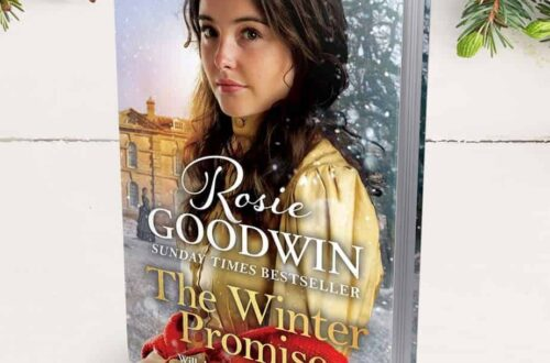 Book cover for The Winter Promise by Rosie Goodwin