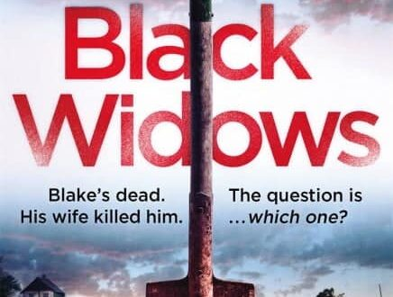book cover for Black Widows by Cate Quinn
