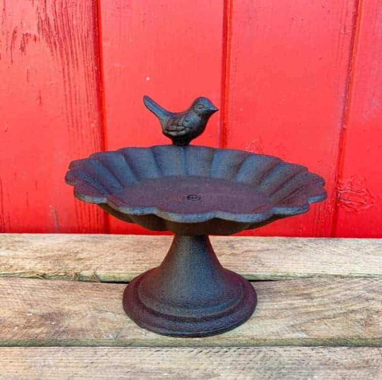 cast iron birdbath with a robin perched on the side